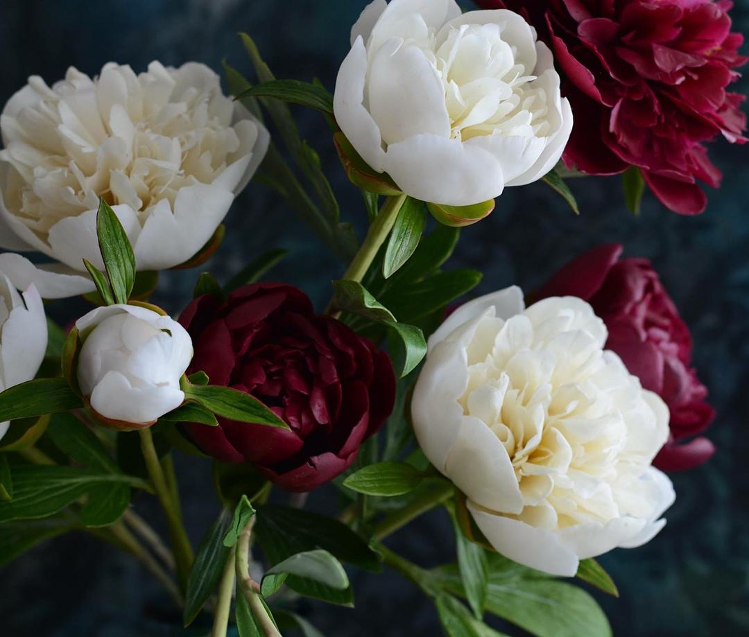 цветы пионы из полимерной глины
